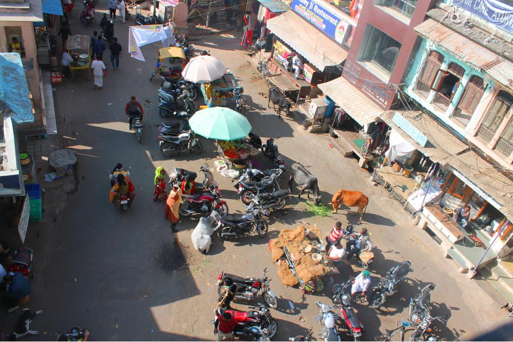 lezioni marketing viaggio india vista alto
